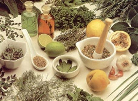 Universitarios revaloran el uso de plantas medicinales - Cuida tu ...