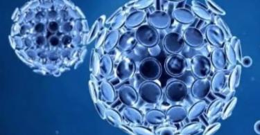 ¿Cuánto vive el coronavirus?